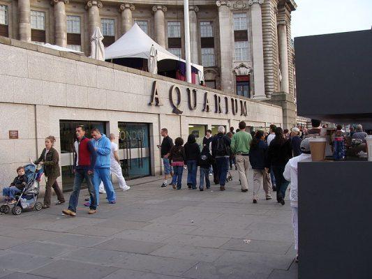 800px-London_Aquarium.001_-_London