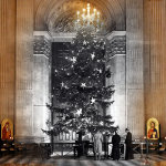 The Christmas tree in St Paul's Cathedral, London, which was brought from the royal estates at Windsor on December 19, 1950