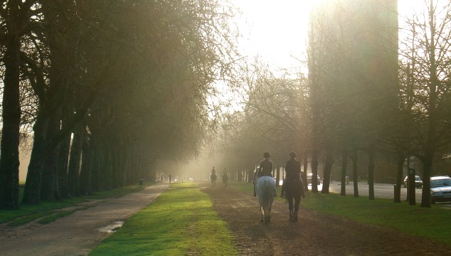 London's Back Garden: 10 Interesting Facts and Figures about Hyde Park You Might Not Know