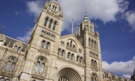 Ten Interesting Facts and Figures about London's Natural History Museum