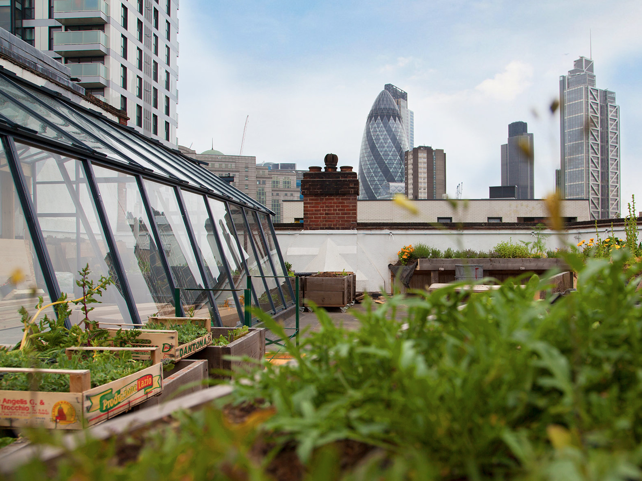 The London Fiver Five Of The Best Rooftop Gardens In