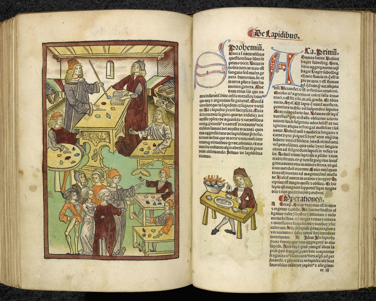 Jacob Meydenbach, Ortus Sanitatis (Strasbourg, 1491) (c) British Library Board