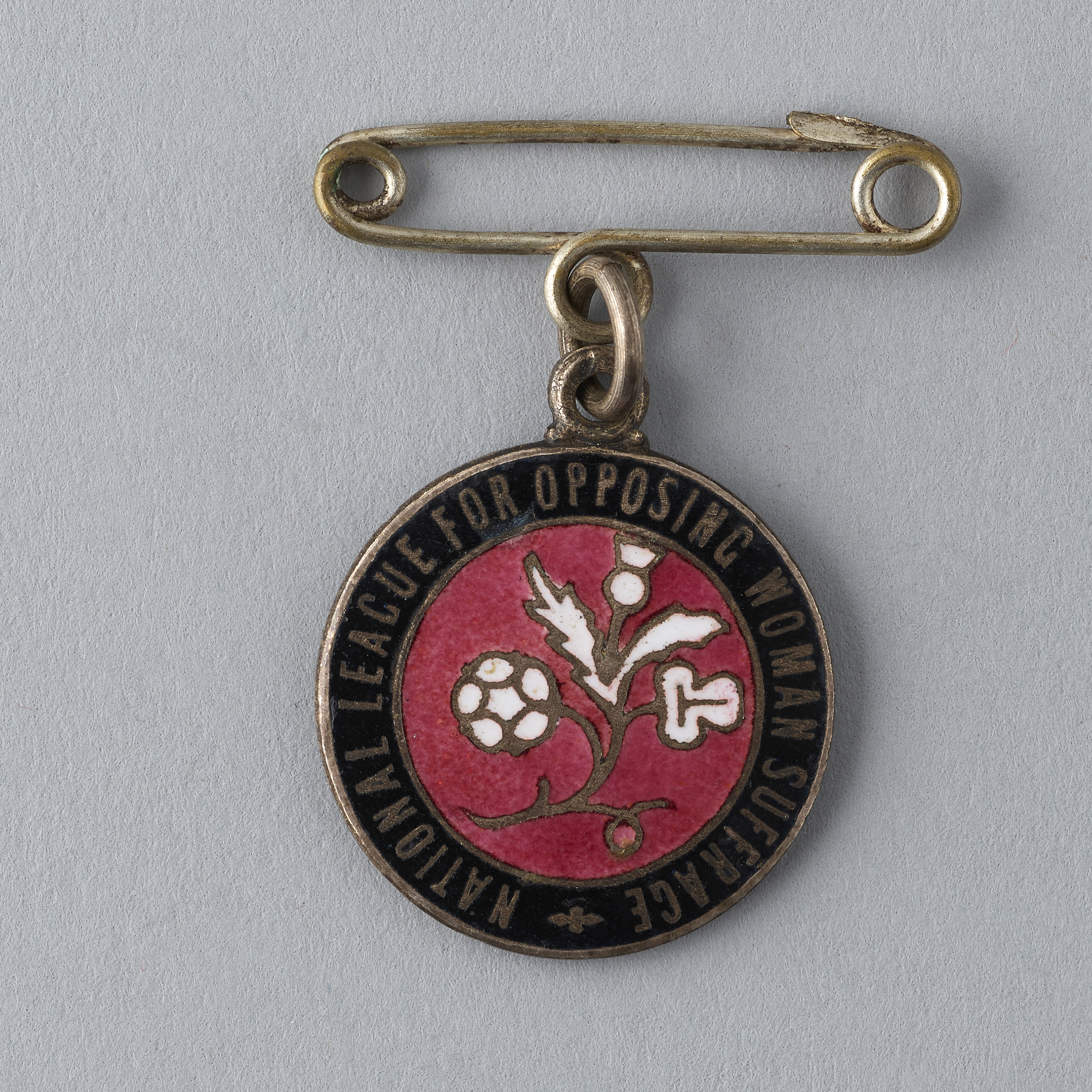 National League for Opposing Woman Suffrage badge