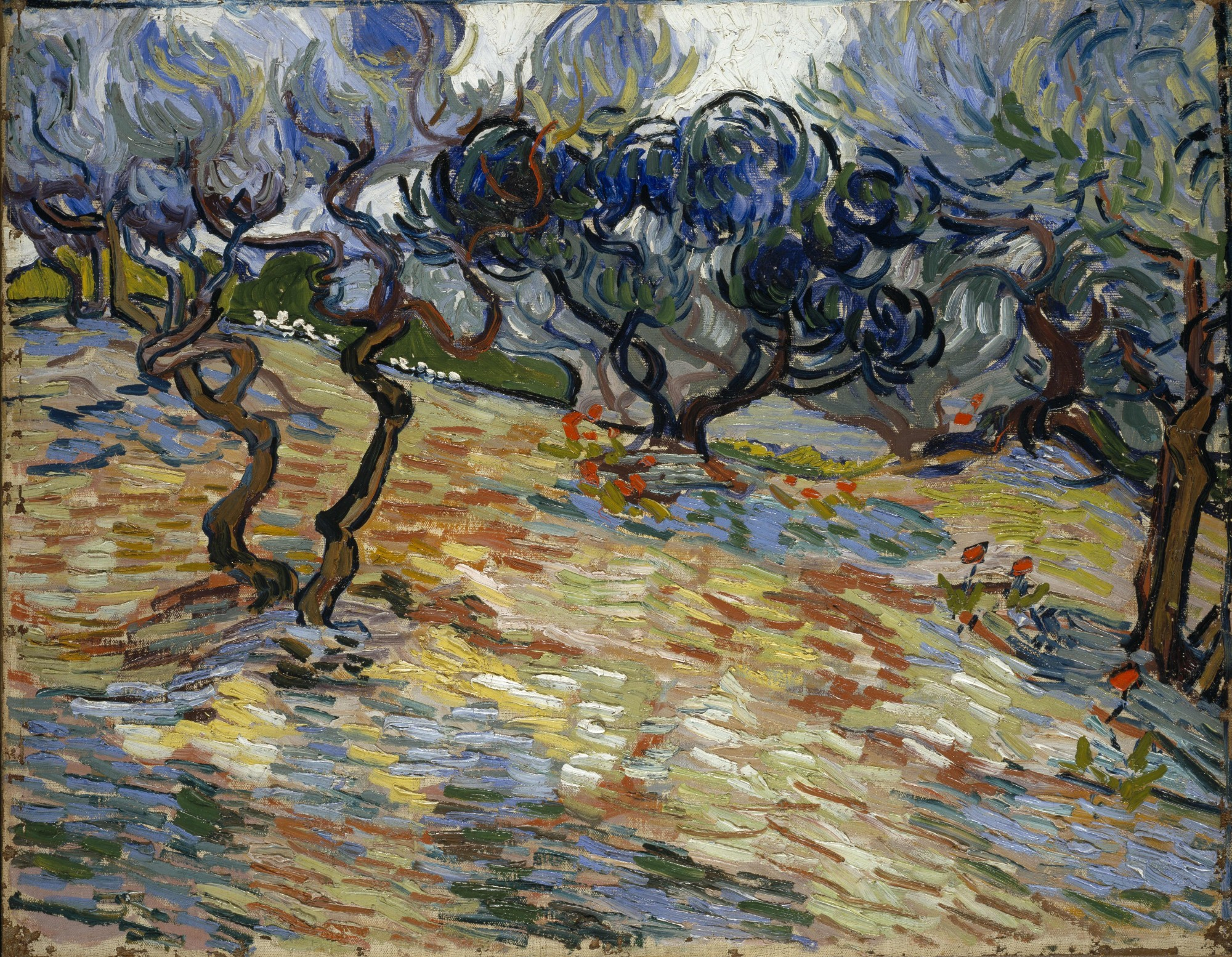 Vincent van Gogh – Olive Trees, 1889. National Galleries of Scotland