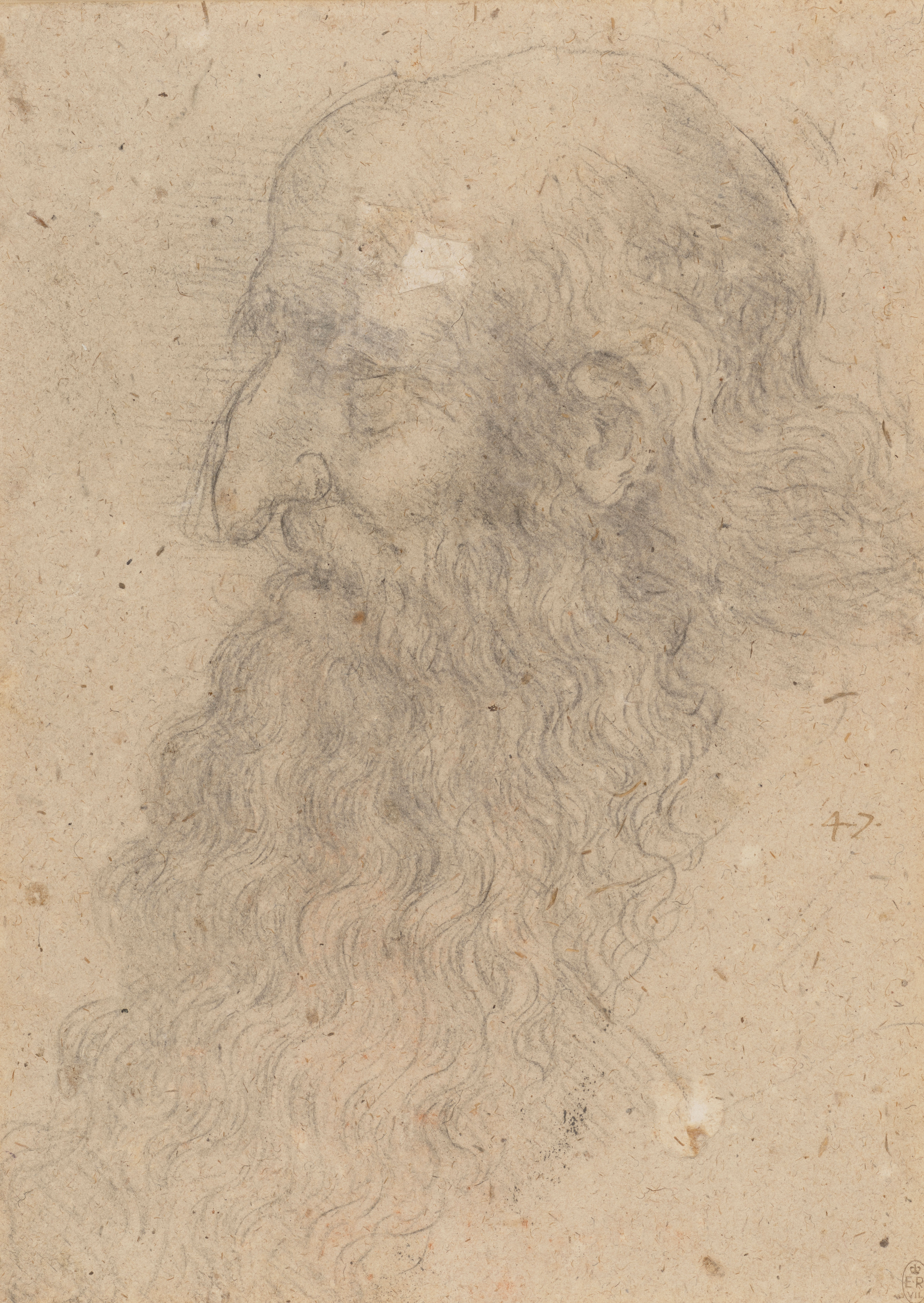 Leonardo da Vinci, 'The head of an old bearded man in profile', c.1519