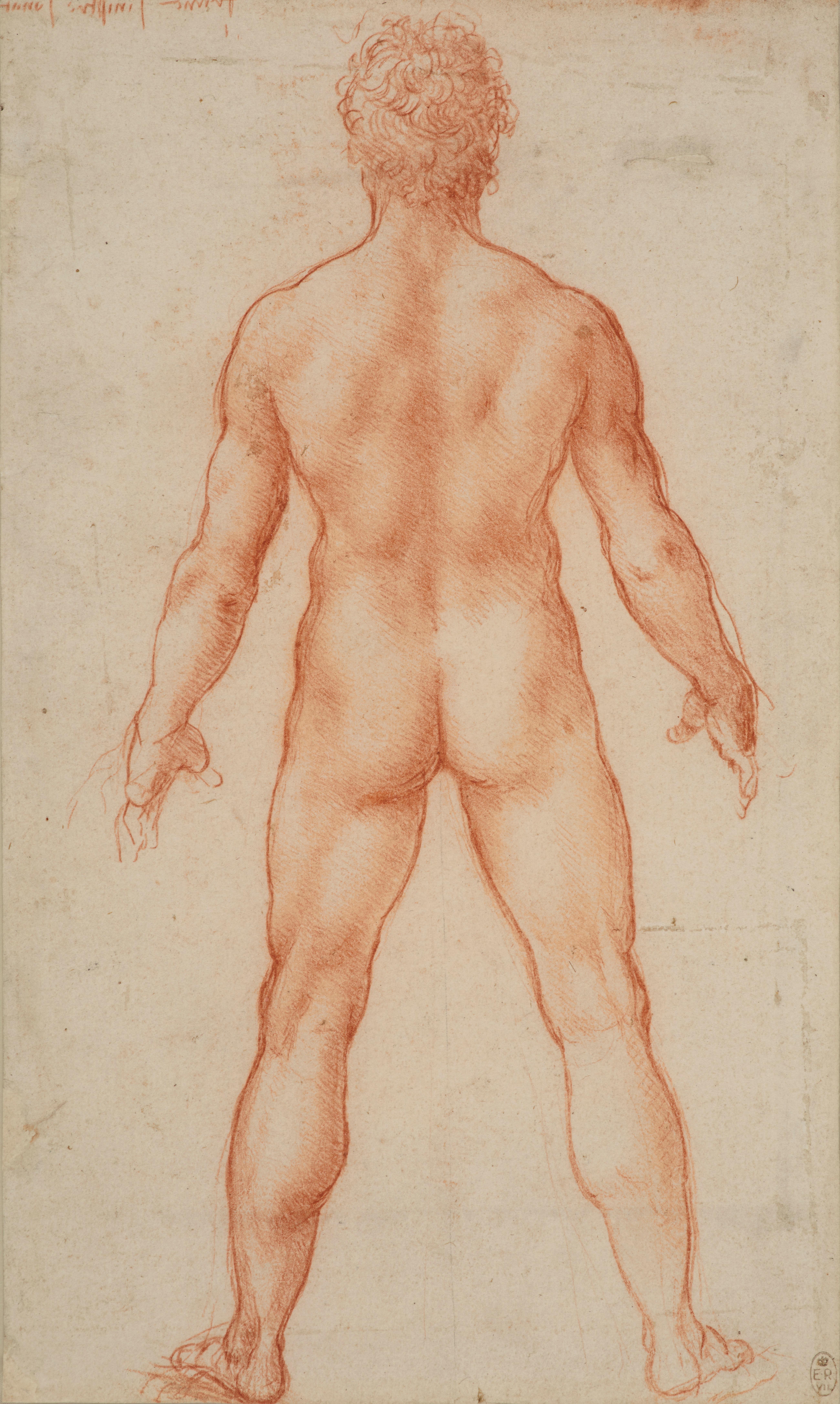 Leonardo da Vinci, A standing male nude, c.1504-6.