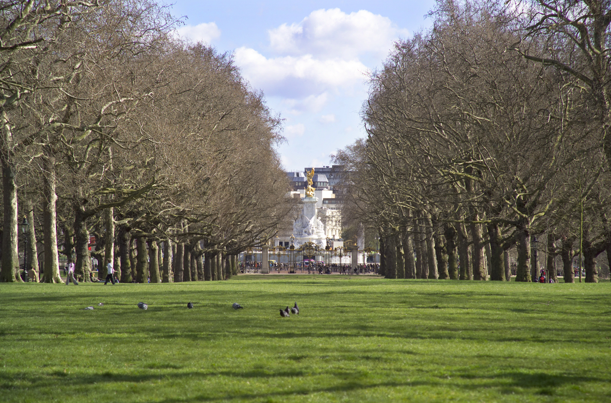 View from The Broad Walk towards Buckingham Palace, St James's Park.